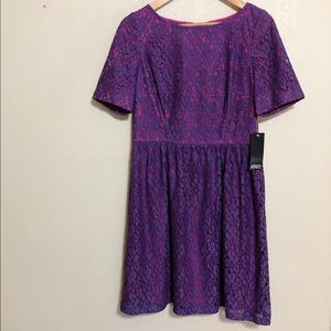 Adrianna Papell Lace A-Line Dress Pink Lining
